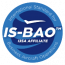 is bao